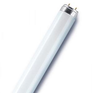 TL Fluorescentie